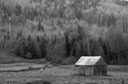 Country barn in Black & white